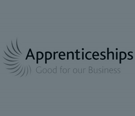 100 Apprenticeships - Celebratory Event